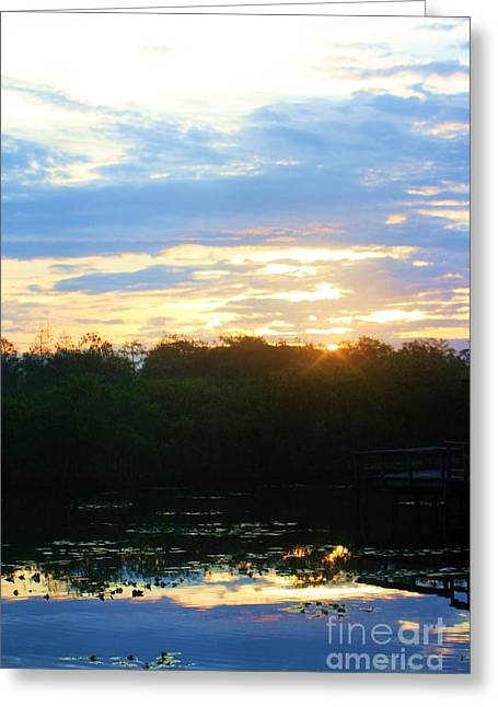 Mangrove Forest Greeting Cards - Reflection Of A Sunrise Greeting Card by Chuck  Hicks