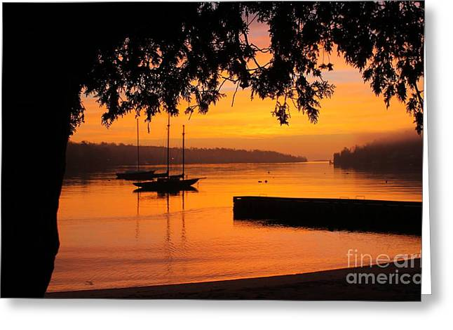Arctic Rose Greeting Cards - Reflection of  Another Day Greeting Card by Dave Lahn
