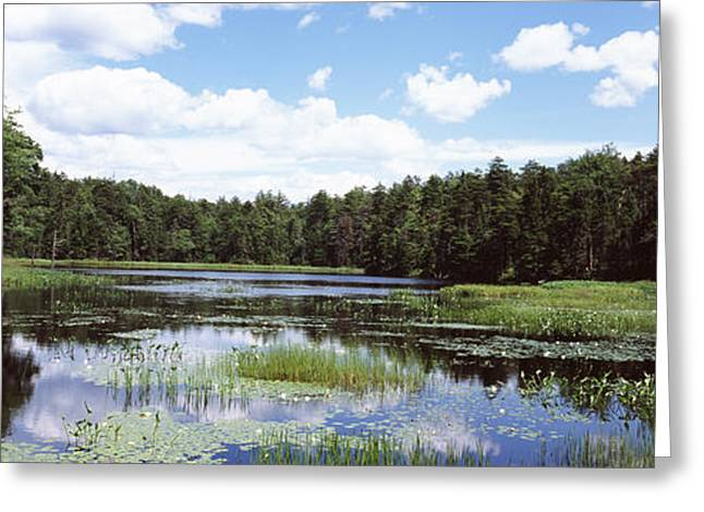 Adirondack Mountains Greeting Cards - Reflection Of Clouds In A Pond Greeting Card by Panoramic Images