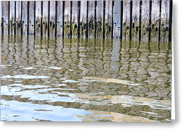 Reflection of Fence  Greeting Card by Sonali Gangane
