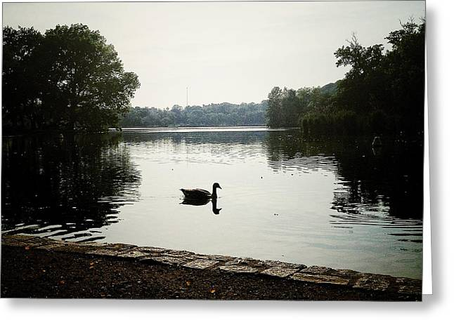 Prospects Greeting Cards - Reflection of Serenity Greeting Card by Natasha Marco