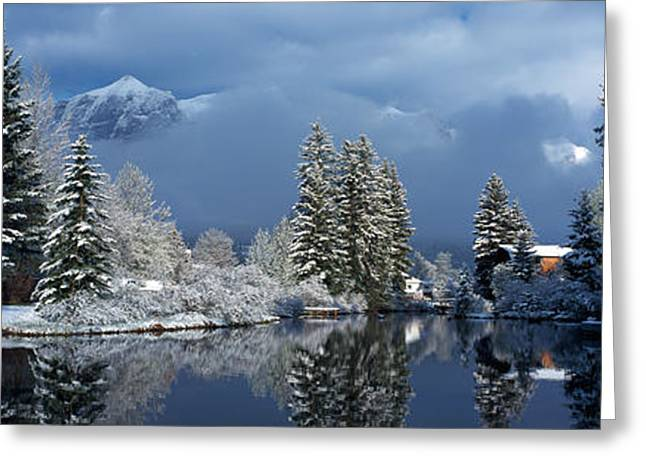 Rundle Greeting Cards - Reflection Of Tree In A Creek, Spring Greeting Card by Panoramic Images