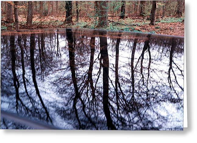 Reflex Greeting Cards - Reflection of trees in a forest in car roof Greeting Card by Matthias Hauser
