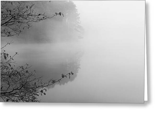 Panoramic Photography Greeting Cards - Reflection Of Trees In A Lake, Lake Greeting Card by Panoramic Images