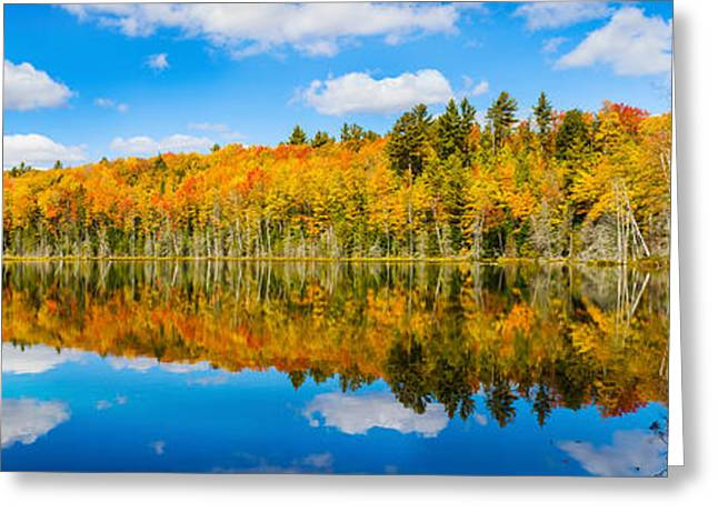 Upper Peninsula Greeting Cards - Reflection Of Trees In A Lake, Petes Greeting Card by Panoramic Images