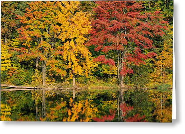 Autumn Colors Greeting Cards - Reflection Of Trees In Water, Saratoga Greeting Card by Panoramic Images