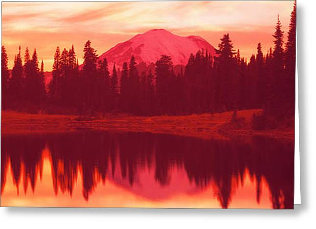 Fir Trees Greeting Cards - Reflection Of Trees In Water, Tipsoo Greeting Card by Panoramic Images