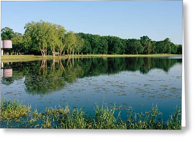 Warner Park Greeting Cards - Reflection Of Trees In Water, Warner Greeting Card by Panoramic Images