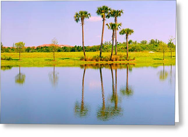 Reflection In Water Greeting Cards - Reflection Of Trees On Water, Lake Greeting Card by Panoramic Images