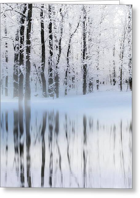 Reflection On A Dream Collingwood, On Greeting Card by Andrea Kollo
