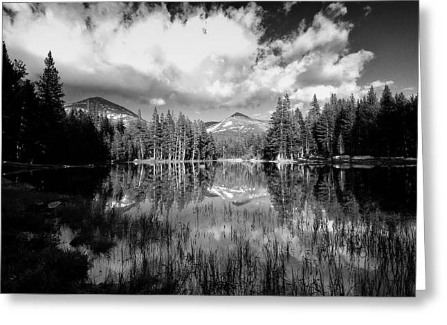 Cloudy Days Greeting Cards - Reflection Pond Greeting Card by Cat Connor