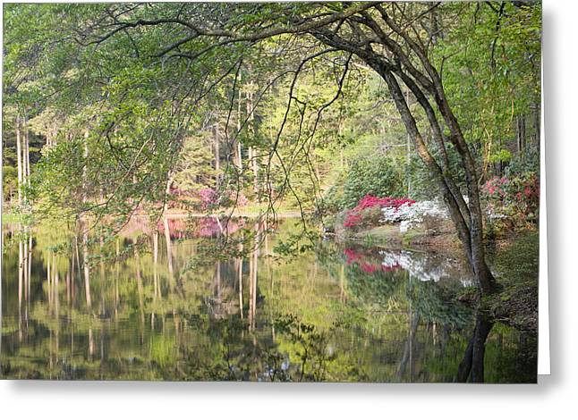 Chatham Greeting Cards - Reflection Pond Greeting Card by Eggers   Photography