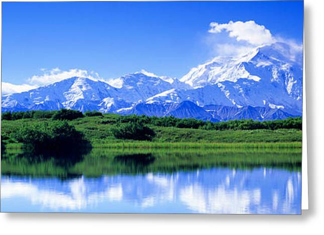 Snow Covered Field Greeting Cards - Reflection Pond, Mount Mckinley, Denali Greeting Card by Panoramic Images