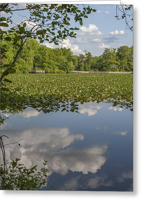Spiritual Teacher Greeting Cards - Reflection Smithville Lake New Jersey Greeting Card by Terry DeLuco