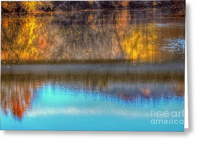 Reflections Of Trees In River Greeting Cards - Reflection With a Ripple  Greeting Card by Peggy  Franz