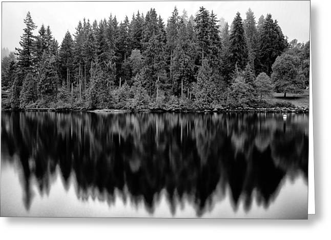 North Vancouver Pyrography Greeting Cards - Reflections 2 Greeting Card by Jack Vainer