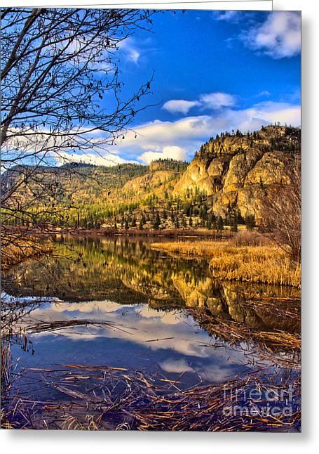 Lanscape Greeting Cards - Reflections at Vaseux Lake Greeting Card by Tara Turner