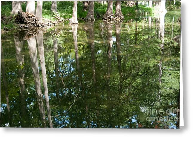 Reflections Greeting Card by Barbara Shallue