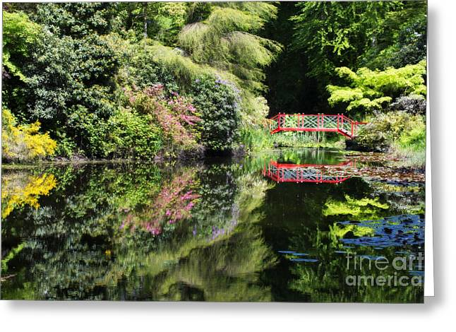 Calm Waters Greeting Cards - Reflections Greeting Card by Amanda And Christopher Elwell