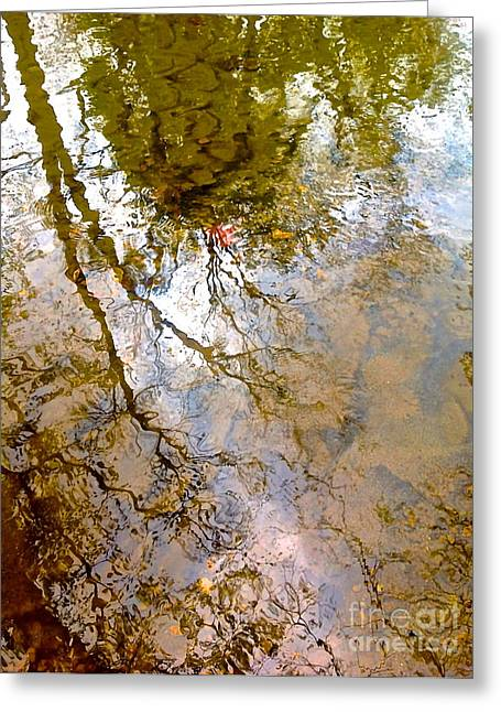 Trees Reflecting In Water Greeting Cards - Reflections Greeting Card by Delona Seserman