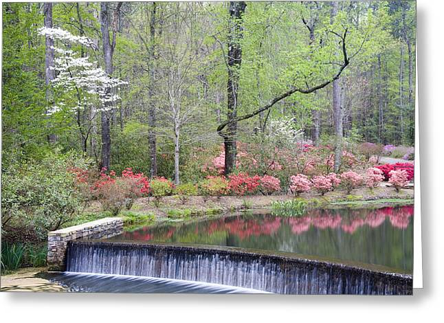 Chatham County Greeting Cards - Reflections Greeting Card by Eggers   Photography