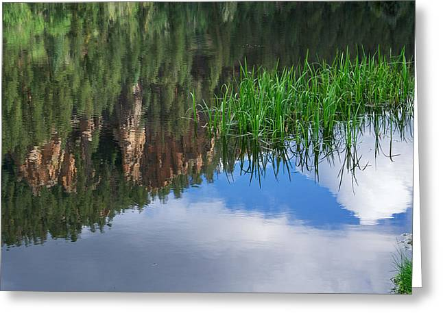 Jemez Mountains Greeting Cards - Reflections in a Mountain Pond Greeting Card by Mary Lee Dereske