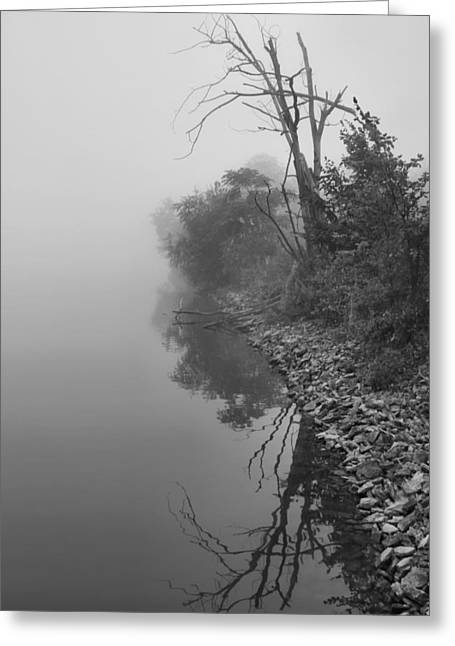 Reflection In Water Greeting Cards - Reflections In Black And White Greeting Card by Dan Sproul