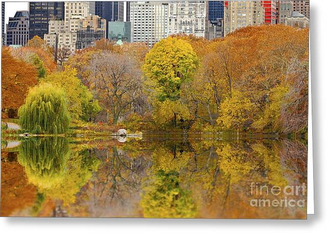 Busybee Greeting Cards - Reflections in Central Park New York City Greeting Card by Sabine Jacobs
