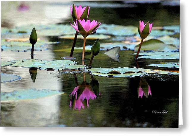 Water Garden Digital Art Greeting Cards - Reflections in Fuchsia Greeting Card by Suzanne Gaff