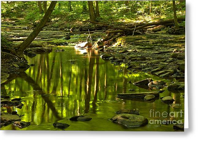 Mcconnels Mill Greeting Cards - Reflections In Hells Hollow Creek Greeting Card by Adam Jewell