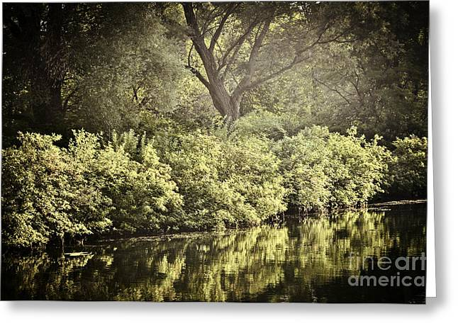 Fresh Green Greeting Cards - Reflections in water Greeting Card by Elena Elisseeva