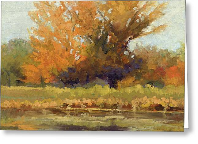 Fall Trees With Stream. Greeting Cards - Reflections Greeting Card by Janet Fons
