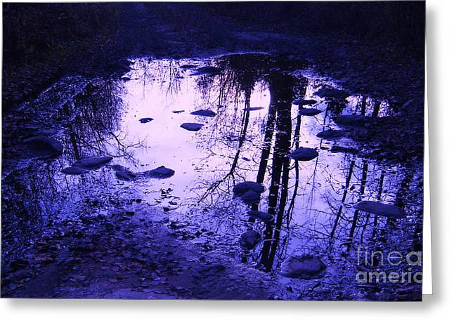 Nanas Art Greeting Cards - Reflections Greeting Card by Marianne NANA Betts
