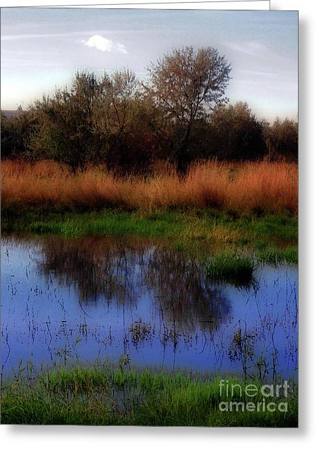 Pacificnorthwest Greeting Cards - Reflections Greeting Card by Molly McPherson