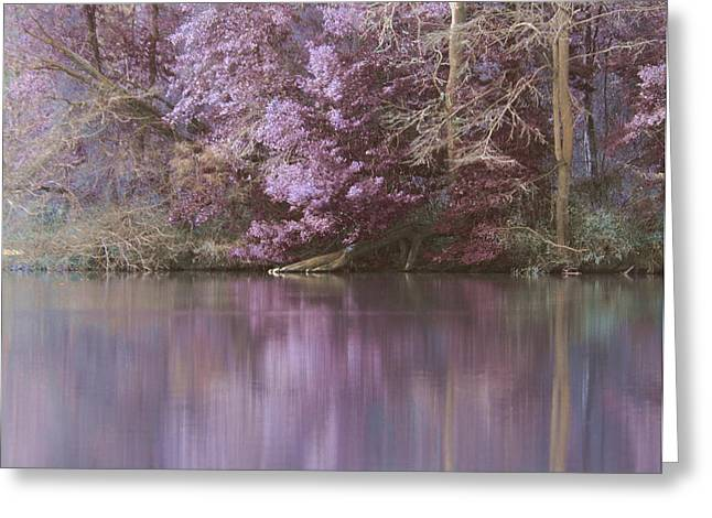 Reflections Of A Pond Greeting Card by Francie Davis