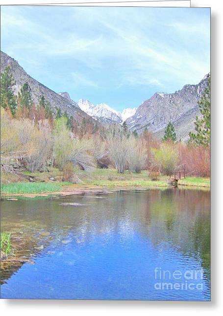 Big Pine Country Greeting Cards - Reflections Of Blue Greeting Card by Marilyn Diaz