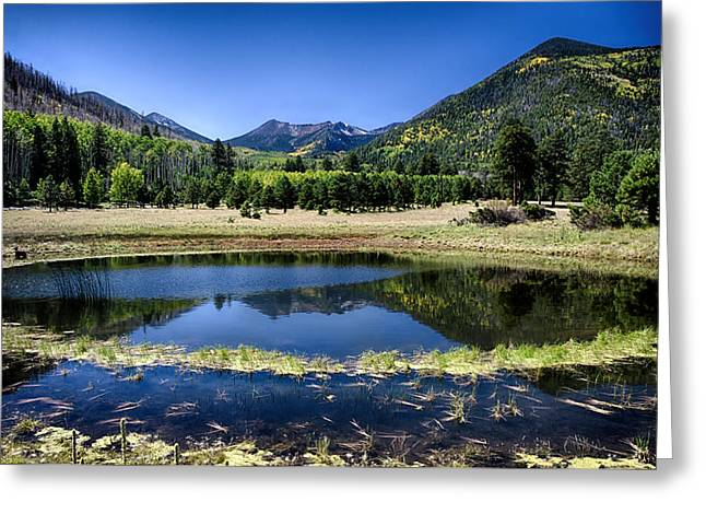 San Francisco Peaks Greeting Cards - Reflections of Blue  Greeting Card by Saija  Lehtonen