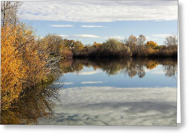 Reflections Of Clouds Greeting Card by Dana Moyer