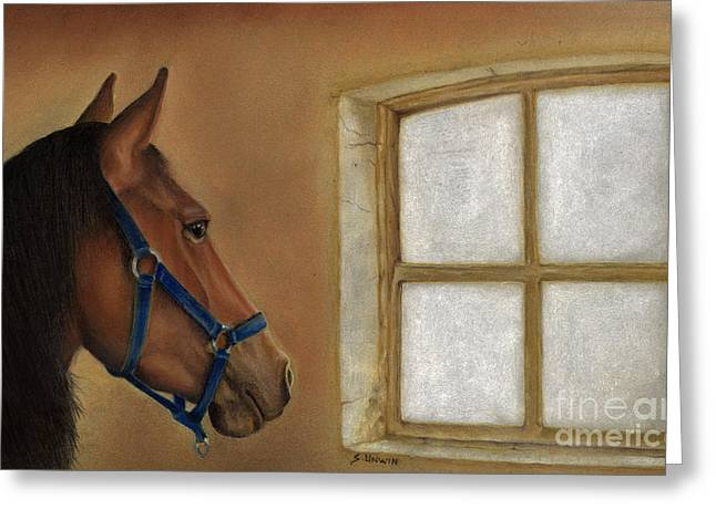 Equines Pastels Greeting Cards - Reflections of Days Gone By Greeting Card by Sheryl Unwin