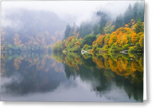 Umpqua River Greeting Cards - Reflections of Fall along the Umpqua Greeting Card by Patricia  Davidson