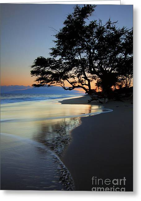 Lahaina Photographs Greeting Cards - Reflections of One Greeting Card by Mike  Dawson