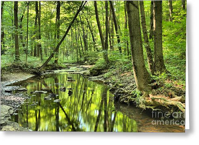 Mcconnels Mill Greeting Cards - Reflections Of Tranquility Greeting Card by Adam Jewell