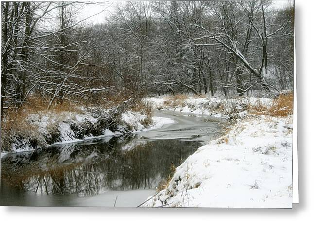 Winter Solstice Greeting Cards Greeting Cards - Reflections Of Winter Greeting Card by Kay Novy