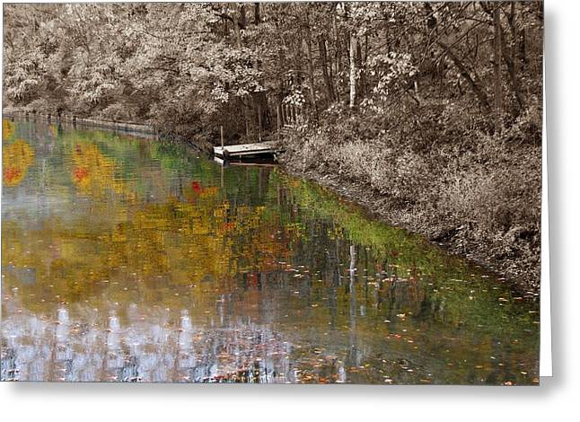 Reminiscing Greeting Cards - Reflections of youth Greeting Card by David Dehner
