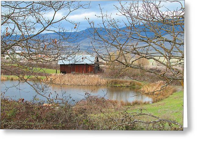 Sheds Greeting Cards - Reflections on a Cloudy Day Greeting Card by Brooks Garten Hauschild
