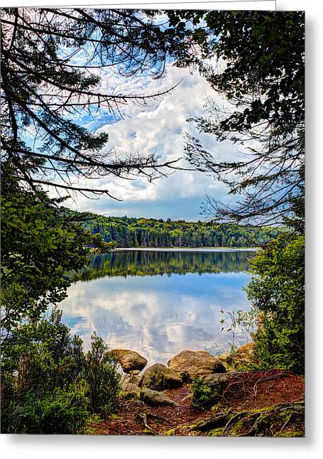 Lush Green Greeting Cards - Reflections on Bubb Lake in the Adirondacks Greeting Card by David Patterson