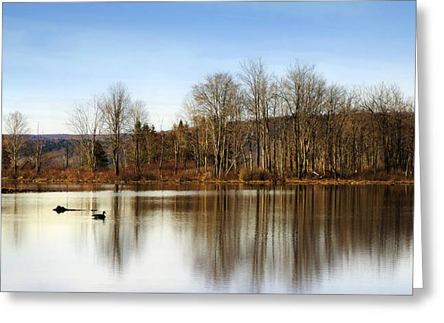 Reflections On Golden Pond Greeting Card by Christina Rollo