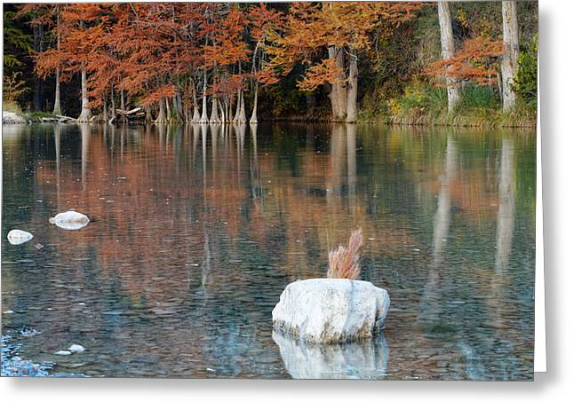 Country Photographs Greeting Cards - Reflections on The Frio River II Greeting Card by Silvio Ligutti