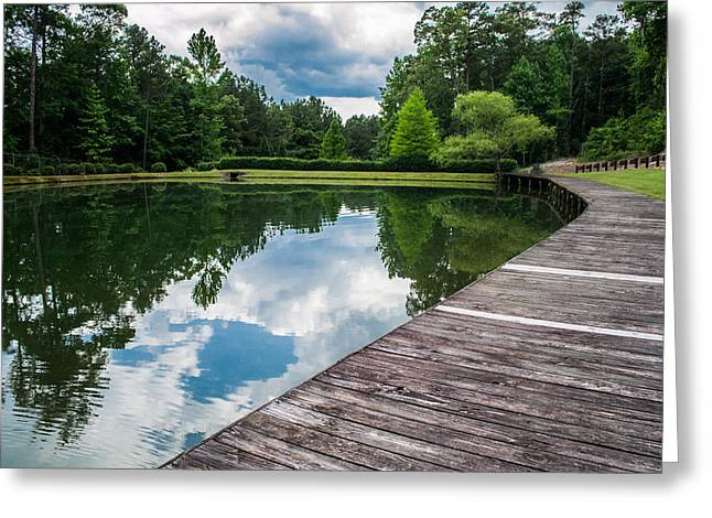 Tree Lines Digital Greeting Cards - Reflections Over the Lake Greeting Card by Shelby  Young