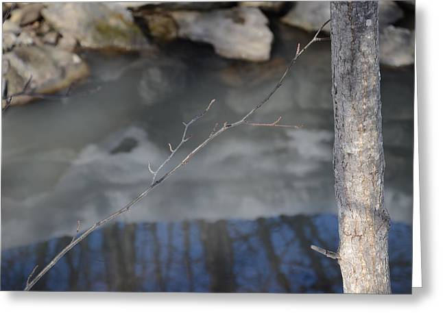 Reflections Greeting Card by Vinci Photo